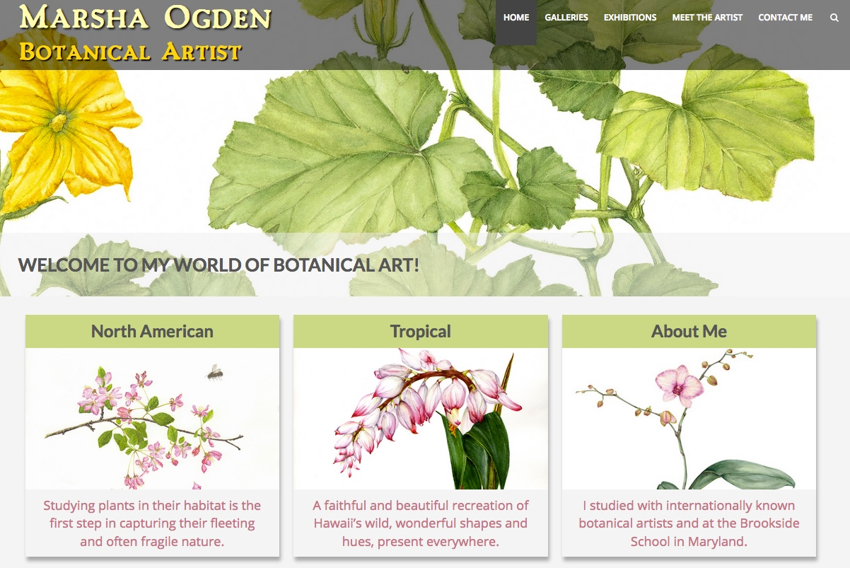 Image of botanicalartstudio.com